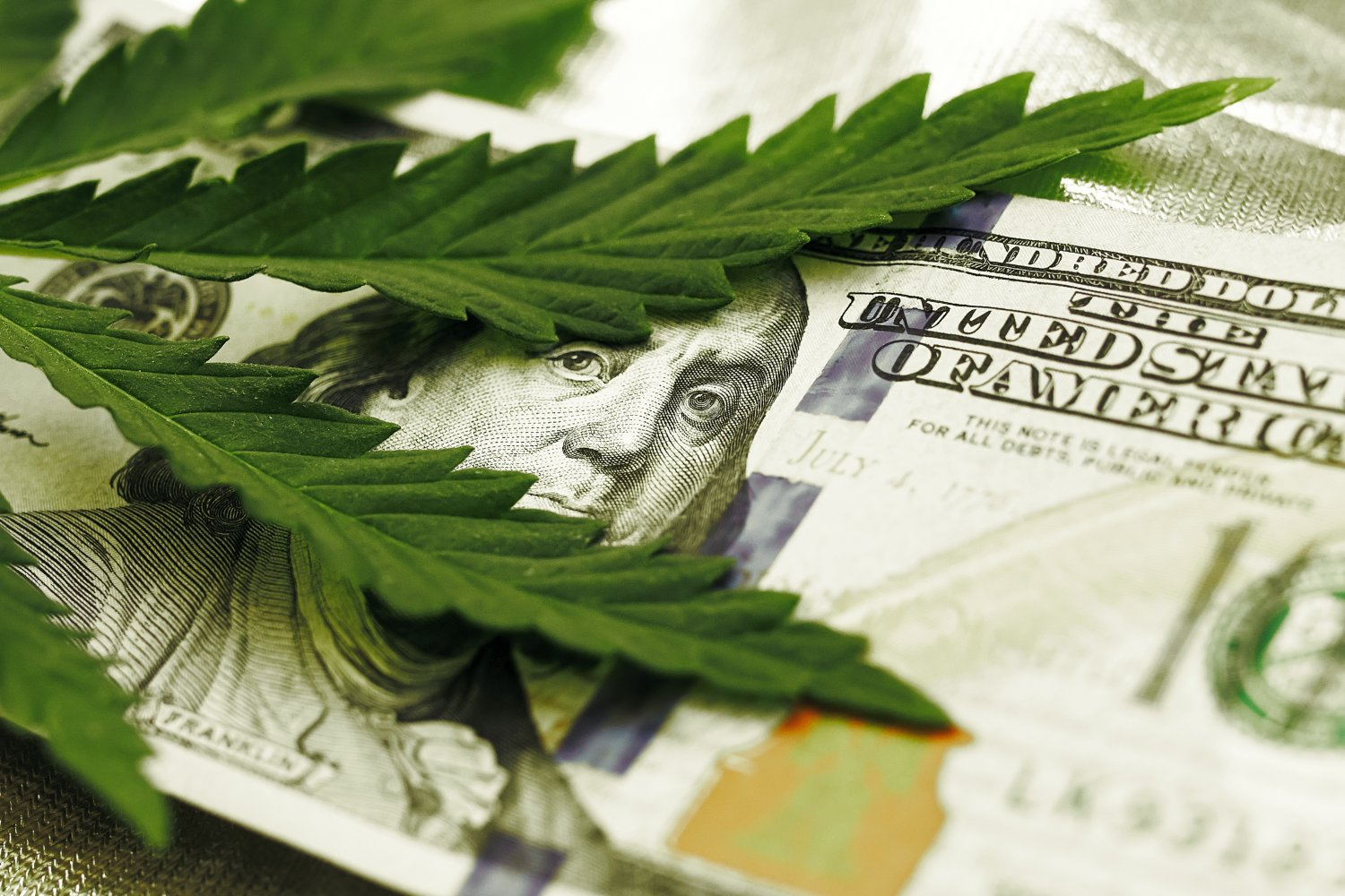 HOW TO INVEST IN THE MARIJUANA MARKET